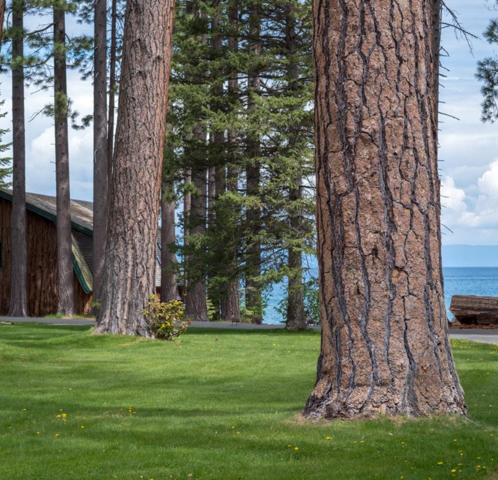 Lake Tahoe - einfach nur schön und Natur pur